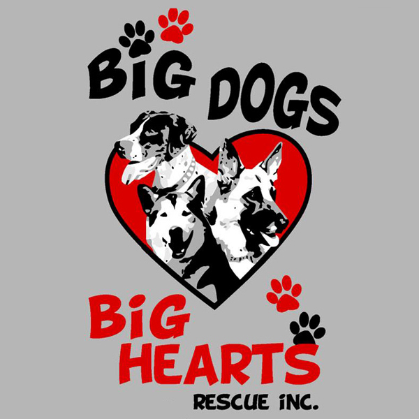 Big Dogs Big Hearts